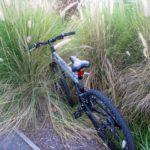 Certain Effects When You Stop Biking